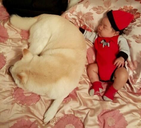 My adorable nephew, Benjamin, and his faithful dog, Mozart