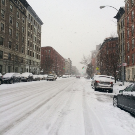 Snow Days in New York City, 2015